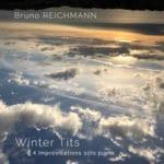 Winter Tits by Bruno Reichmann